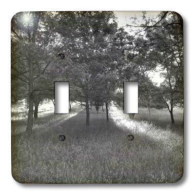 3dRose LLC lsp_32925_2 Rays of the Sun Through the Trees Black and White - Double Toggle - Ray Pics Ray