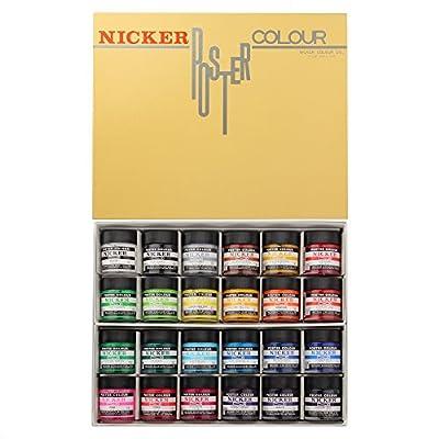 Knicker poster color in bottle 24 color set (japan import)