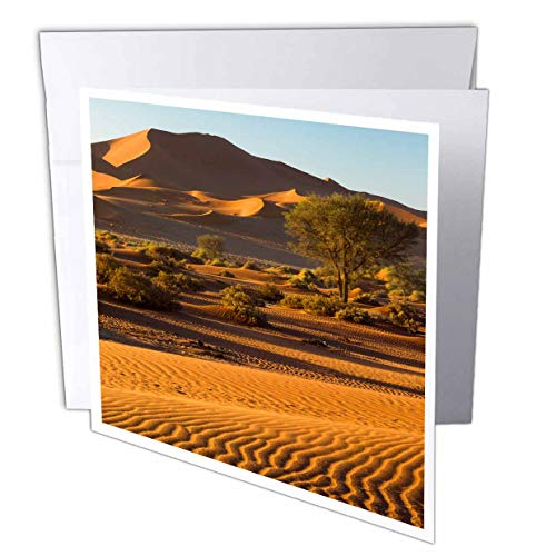 (3dRose Danita Delimont - Namibia - Namibia, Namib Desert. Scenic Sand Dunes with Wind Patterns. - 1 Greeting Card with Envelope (gc_310471_5))