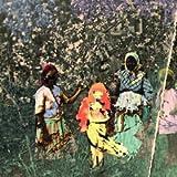 Laulu Laakson Kukista [Vinyl]