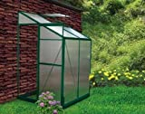 Cheap 4 x 4 Lean to Greenhouse