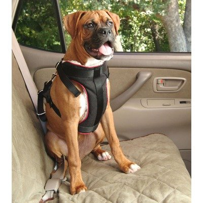 Pet Vehicle Safety Harness Size: X-Large: Dogs 60-120 lbs, My Pet Supplies