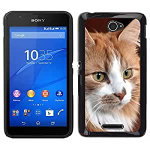 // PHONE CASE GIFT // Duro Estuche protector PC Cáscara Plástico Carcasa Funda Hard Protective Case for Sony Xperia E4 / Norwegian Forest Cat Maine Coon /