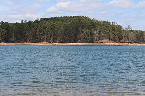 Home Comforts Peel-n-Stick Poster of Water Island Trees Lake Lanier Forsyth Georgia Ga Vivid Imagery Poster 24 x 16 Adhesive Sticker Poster Print (Lake Lanier Decal)
