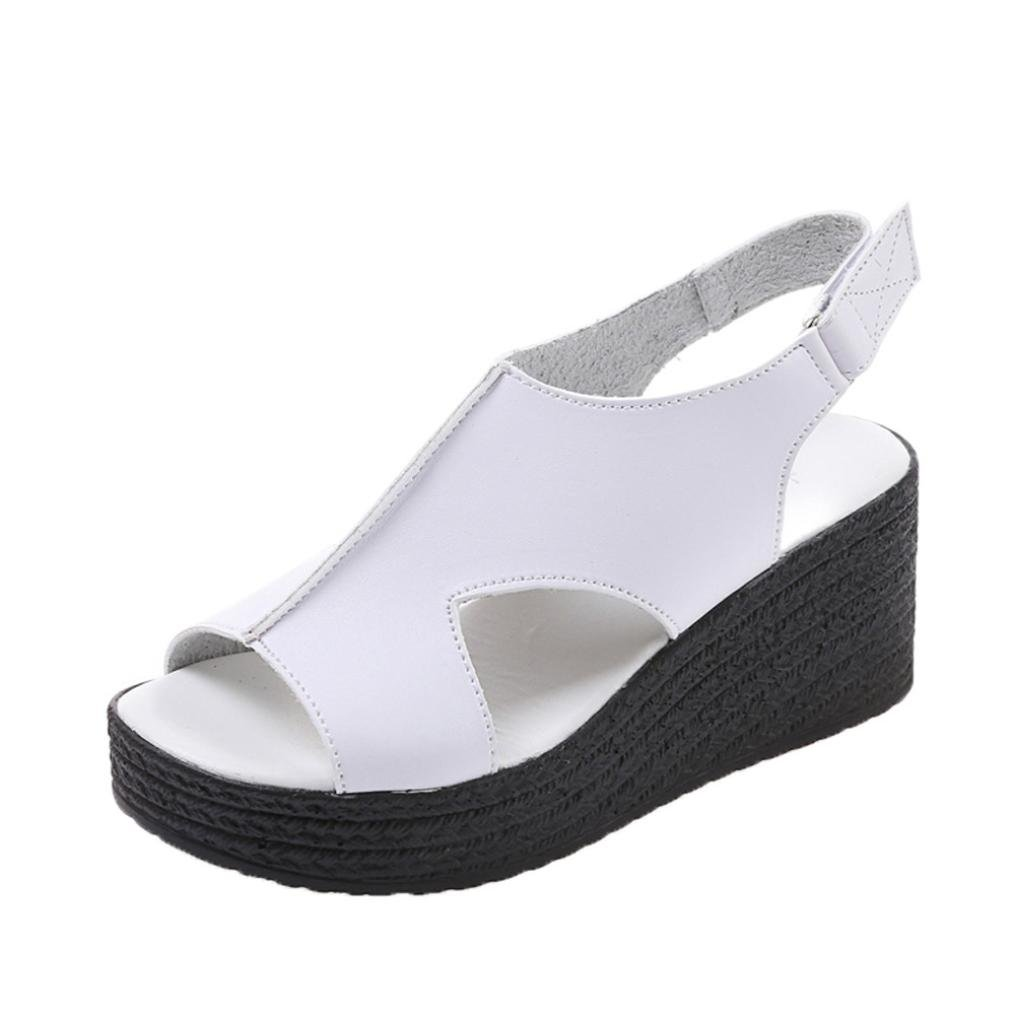 Alonea Women Thick Bottom Wedges Slope Open Toe Sandals Buckle Strap Shoes