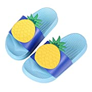 Cute Bath Slippers Colorful Fruit Beach Sandals Shower Shoes for Adults and Kids BL26