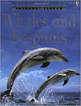 Discovery Program: Dolphins and Whales (Internet-linked discovery) by Susannah Davidson (25-Oct-2002)