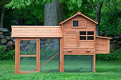 The Clubhouse Chicken Coop