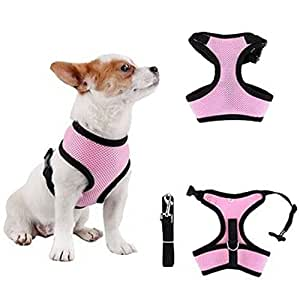 Amazon.com : No Pull Dog/Poodle Harness and Leash Set for