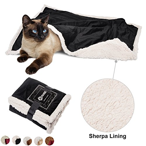 Puppy Blanket,Super Soft Sherpa Dog Blankets and Throws Cat Fleece Sleeping Mat for Pet Small Animals 45x30 Black by Pawsse (Image #1)