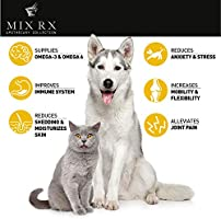 (2 Pack   1000mg) Hemp Oil for Dogs Cats Pets, Organic Calming Dog Treats  for Separation Anxiety Pain Relief - Natural Hemp Extract Stress Sleep Aid  -