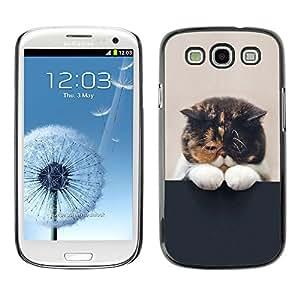 Qstar Arte & diseño plástico duro Fundas Cover Cubre Hard Case Cover para SAMSUNG Galaxy S3 III / i9300 / i747 ( Cute Sleepy Kitten Cat Pet Feline Paw)