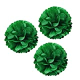 """Wrapables A67464c Set of 3 Tissue Pom Poms Party Decorations for Weddings, Birthday Parties, Baby Showers, and Nursery Decor, Kelly Green, 12"""""""