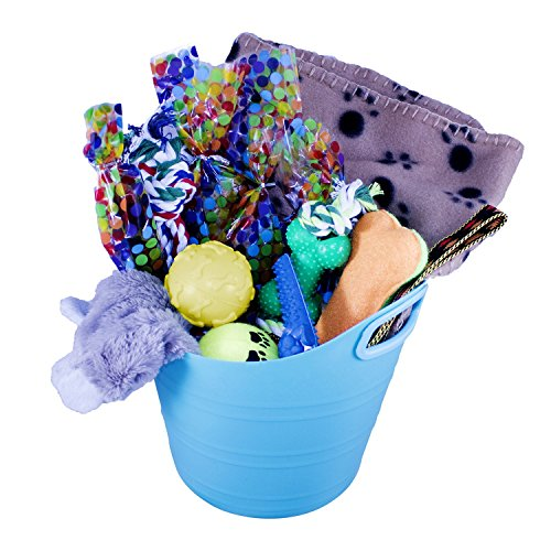 Cheap Just Chill'In Pets Christmas Dog Gift Basket of Chew Toys, Squeaky Toys, and Soft Blanket to Treat Your Dog