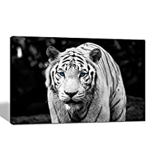 Sea Charm - White Tiger Blue Eye Poster,black and White Animal Canvas Wall Art for Wall Decor,contemporary Canvas Print Framed and Ready to Hang
