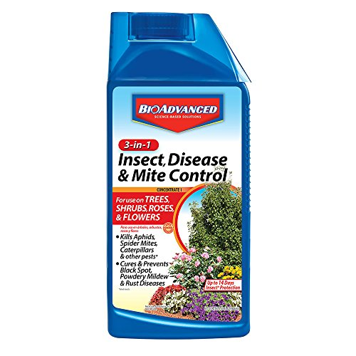 (BioAdvanced 701285B 3-in-1 Insect Disease & Mite Control Concentrate, 32 oz, White )