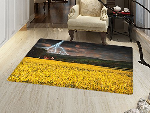 smallbeefly Nature Door Mats for inside Thunderstorm over the Meadow Valley with Scary Dark Sky Rural Farm Scenery Bath Mat for tub Bathroom Mat Yellow Green -