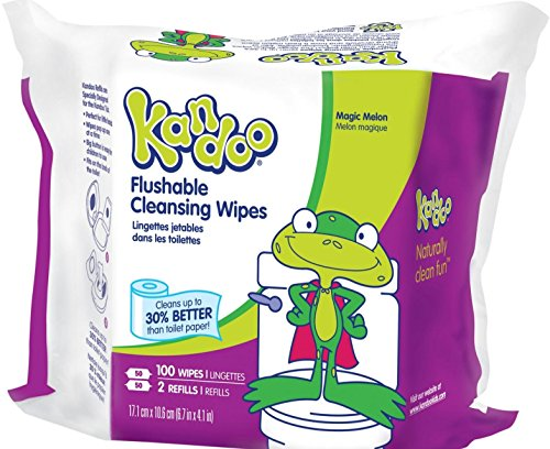 Kandoo Flushable Sensitive Toddler Wipes Refill Packs 100 Count