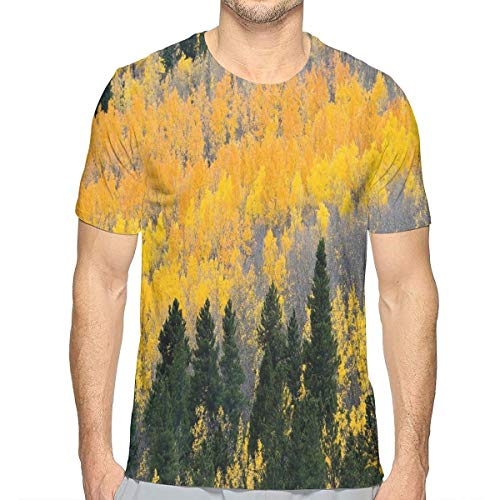 - 3D Printed T Shirts,Colorful Aspen Forest in Colorado Rocky Mountains Western Wilderness USA Theme