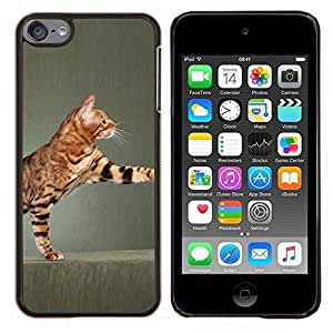 Reproducción Toyger Ocicat gato de Bengala- Metal de aluminio y de plástico duro Caja del teléfono - Negro - iPod Touch 6