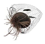 Ahugehome Fascinator Hair Clip Headband Pillbox Hat Vintage Flower Feather Tea Party (R Coffee Brown Taupe)