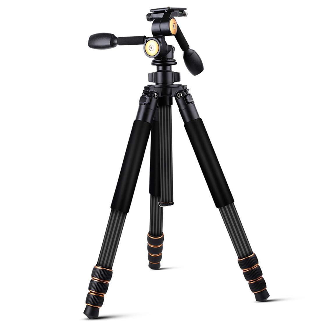 大きい割引 炭素繊維 三脚 旅行に適しています軽量1.7KG 46-177cmの高さ 炭素繊維 DSR B07QWV8YMF 三脚 Slr ソニーキヤノンニコンなどのカメラ機器(推奨荷重315KGブラック) B07QWV8YMF, イビグン:ba17267f --- martinemoeykens.com