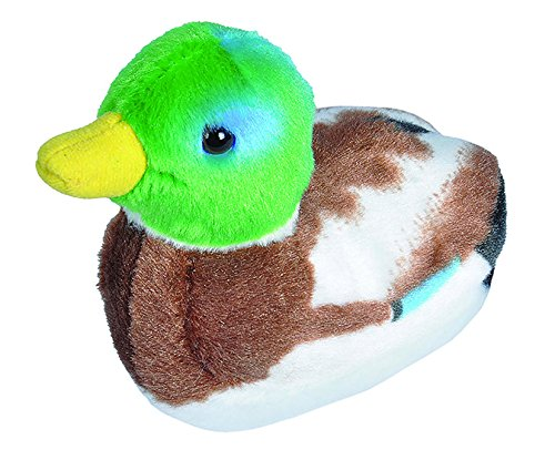 (Wild Republic Audubon Birds Mallard Duck Plush with Authentic Bird Sound, Stuffed Animal, Bird Toys for Kids and Birders)