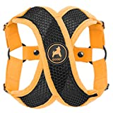 Gooby Choke Free Active X Step-In Synthetic Lambskin Soft Harness Small Dogs, Orange, Medium