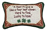 Manual 12.5 x 8.5-Inch Decorative Throw Pillow, Irish Treasures Best Friend