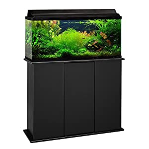 Aquatic fundamentals 30 38 45 gallon upright for 38 gallon fish tank