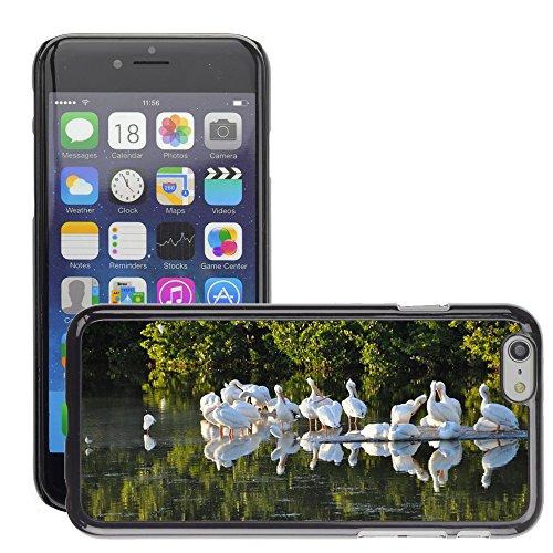 """Just Phone Cases Hard plastica indietro Case Custodie Cover pelle protettiva Per // M00128234 Oiseaux Pélicans Floride Sanibel Island // Apple iPhone 6 PLUS 5.5"""""""