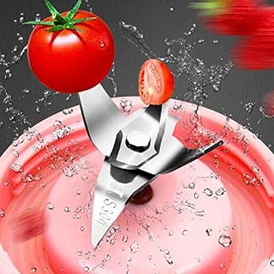 Batidora De Vaso Portátil, Extractor De Zumo Licuadora Acero Inoxidable Picar Hielo Licuadora Exprimidora Para Verduras Y Frutas, Red: Amazon.es