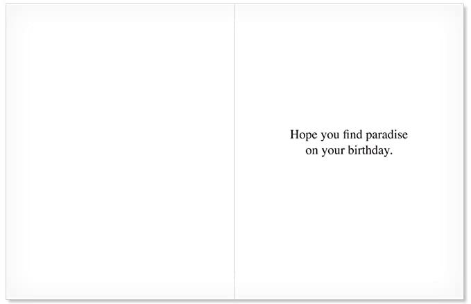 Amazon 85 X 11 Inch Happy Birthday Paper Card With Envelope