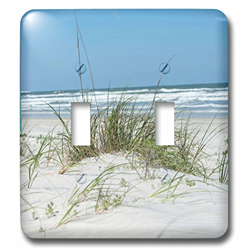 3dRose Danita Delimont - Beaches - USA, Florida, New Smyrna Beach - Light Switch Covers - double toggle switch (lsp_259196_2)