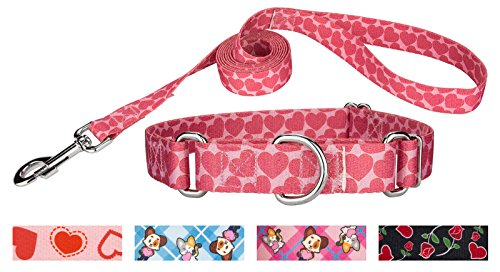 Country Brook Design | Scrolling Hearts Martingale Dog Collar & Leash - Medium