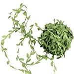 2-Pack-Each-132FT-Artificial-Leaf-Vines-DIY-Wreaths-Flower-Hanging-Plants-Ivy-Garlands-Green-Fake-Leaves-Decorative-Wedding-Party-Garden-Outdoor-Greenery-Decorative
