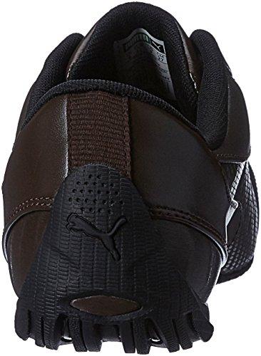 PUMA Drift Cat 5 Carbon Schuhe Herren Sneaker Turnschuhe Braun mit Niedrigprofil-Laufsohle, Größenauswahl:42