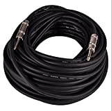 Seismic Audio Q12TW100 100-Feet 1/4 to 1/4-Inches 12-Gauge 2 Conductor Speaker Cable