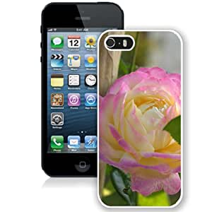 Beautiful Pink Rose (2) Durable High Quality iPhone 5S Phone Case