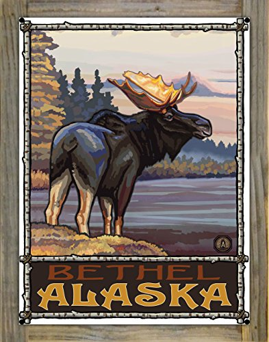 Bethel Alaska Moose Metal Print on Reclaimed Barn Wood by Paul A. Lanquist (18