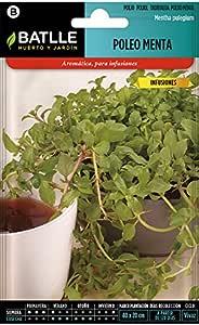 Semillas Aromáticas - Poleo Menta - Batlle: Amazon.es: Jardín