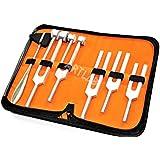 Tuning Fork Set of 5 + Taylor Hammer Medical Surgical Diagnostic Instruments (CYNAMED)