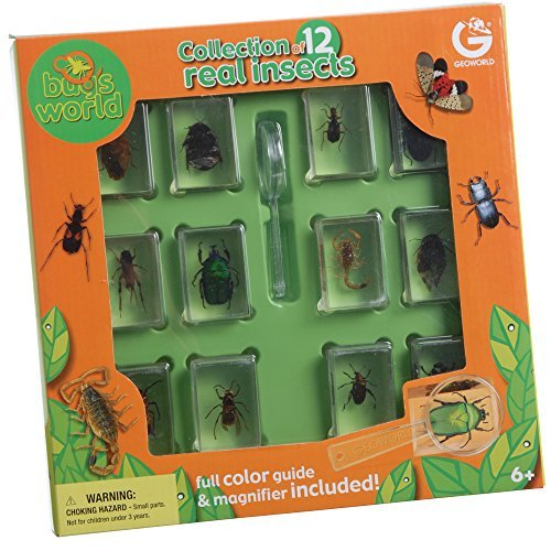 Constructive Playthings GEW-38 Geoworld Bugs World Collection of 12 Real Insects in 1¾'' x 1⅛'' x ¾'' Poly-Resin Blocks
