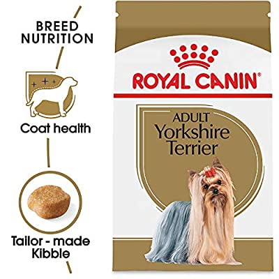 Royal Canin Breed Health Nutrition Yorkshire