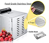 Food Dehydrator Machine 6 Trays Stainless Steel
