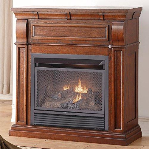el Vent Less, 26,000 BTU, T-Stat Control, Chestnut Oak Finish Gas Fireplace ()