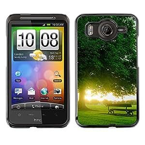 Cubierta de la caja de protección la piel dura para el HTC DESIRE HD / G10 - Full Of Love Heart