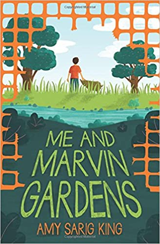 Me and Marvin Gardens: Amy Sarig King: 9780545870740: Amazon.com: Books
