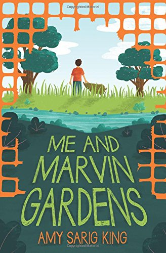 Me and Marvin Gardens ebook