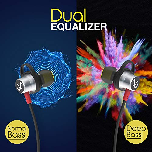 best dual equalizer earphones